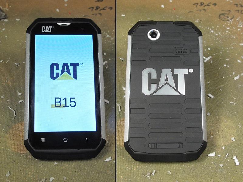 cat_b15_2